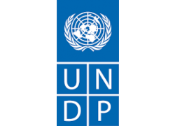 24-UNDP.png